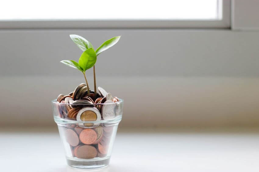 ESG Fund and Investment