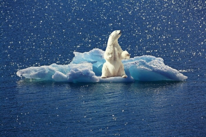 melting of ice in the arctic